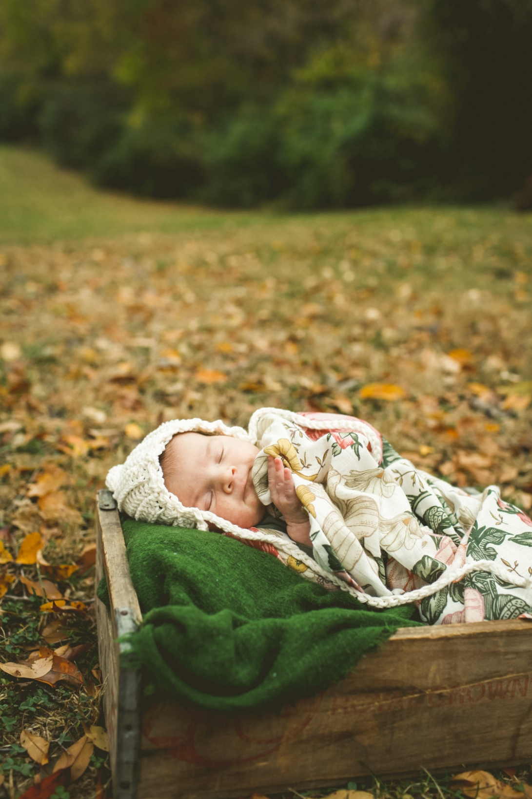 Fossil Photography-Marlowe newborn-3-2